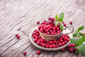 Ripe sweet red forest cranberries in two old metal plates