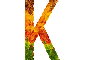 Autumn leaves bright letter K. Natural multi layers living leaves isolated on white background. Colorful character of alphabet letter font. Element nature for decoration, design inscription.