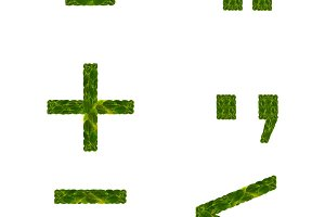 Plus and minus symbol. Dot and comma punctuation characters. More less or equal. Quotation character. Natural multi layers living leaves isolated on white background.