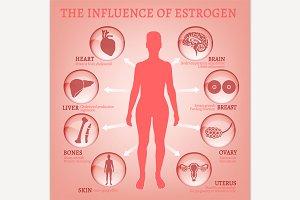 Estrogen Effects Infographic