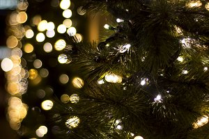 Christmas tree lights out of focus