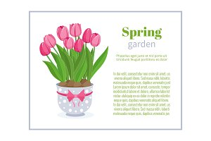 Spring garden. Flower brochure design backgrounds, vector templates of banners or business cards. Spring plant tulip in blue pot and frame vector illustration.