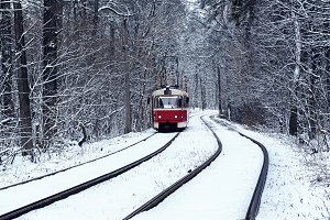 Tram in the forest
