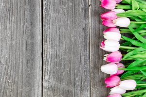 Tulips on Vintage Planks