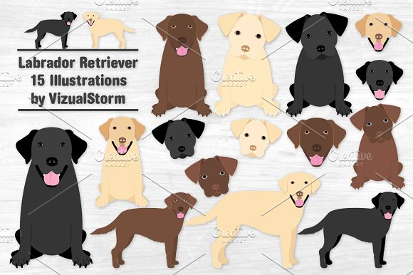 Labrador Retriever Clipart Set