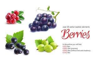 Berries Realistic Set