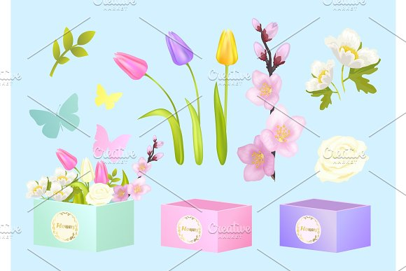 Box And Flowers Set Poster Vector Illustration