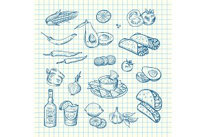 Vector sketched mexican food elements set background