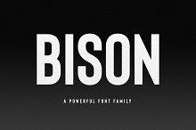 (NEW) Bison - A Powerful Sans Serif
