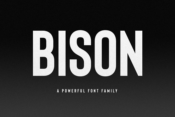 Bison - A Powerful Sans Serif