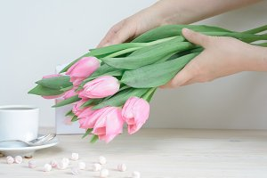 Girl's hands holding pink tulips
