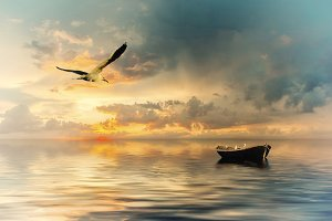 Lonely boat and birds