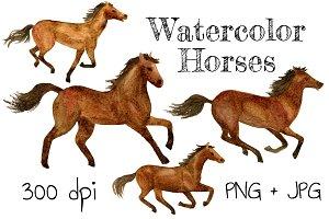 Watercolor Horses (clip art)