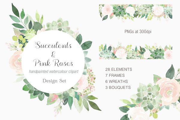 Succulents and Pink Roses Clip Art