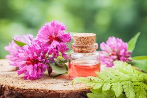 Elixir or essential oil and clover.