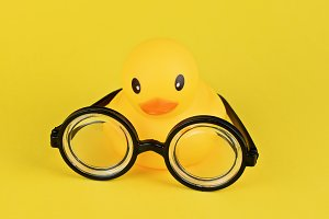 Big yellow rubber duck and goggles