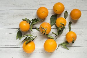 Set of oranges on white wooden