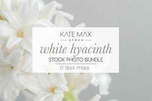 White Spring Flower Stock Photo Bund