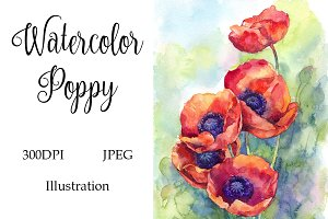 Watercolor Poppies Flowers Art