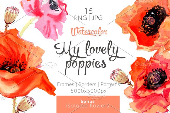 My Lovely Poppies PNG Watercolor Set