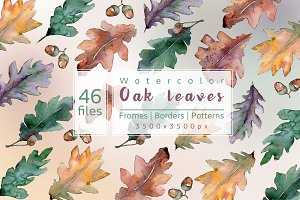 Beautiful autumn oak leaves JPG set