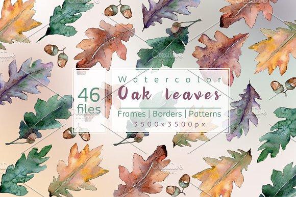 Beautiful Autumn Oak Leaves JPG Set