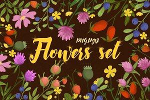 Flowers set/ png psd