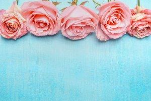 Pink pale roses border on blue