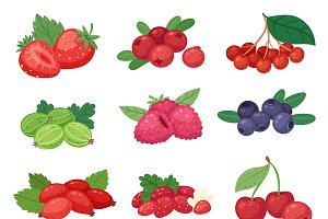 Berry vector berrying mix strawbery