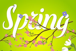 Spring vector text lettering back