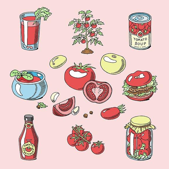Tomato Vector Juicy Tomatoes Food