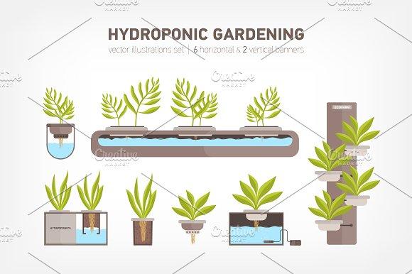 Hydroponic System Gardening