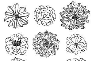 Flower Silhouettes 3 Vectors/Clipart