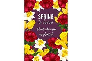 Spring time flowers seasonal vector greeting card