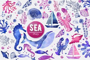 SEA (watercolor elements) Descriptio
