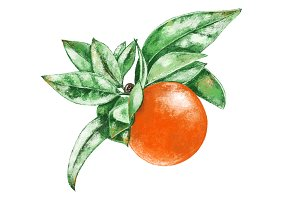 Hand drawn orange.