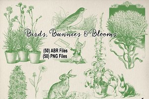Birds, Bunnies & Blooms Brushes Set