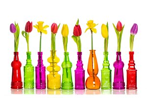 Tulips Spring floral decoration