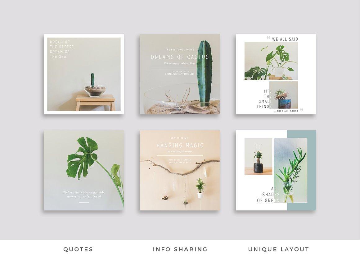 NATURALIS Pinterest Pack