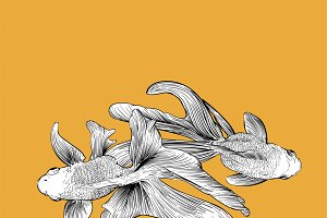 Hand drawing of fish
