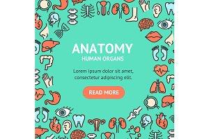 Human Organs Round Design