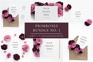 The Primroses Bundle No. 1