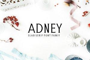Adney Slab Serif Font Family