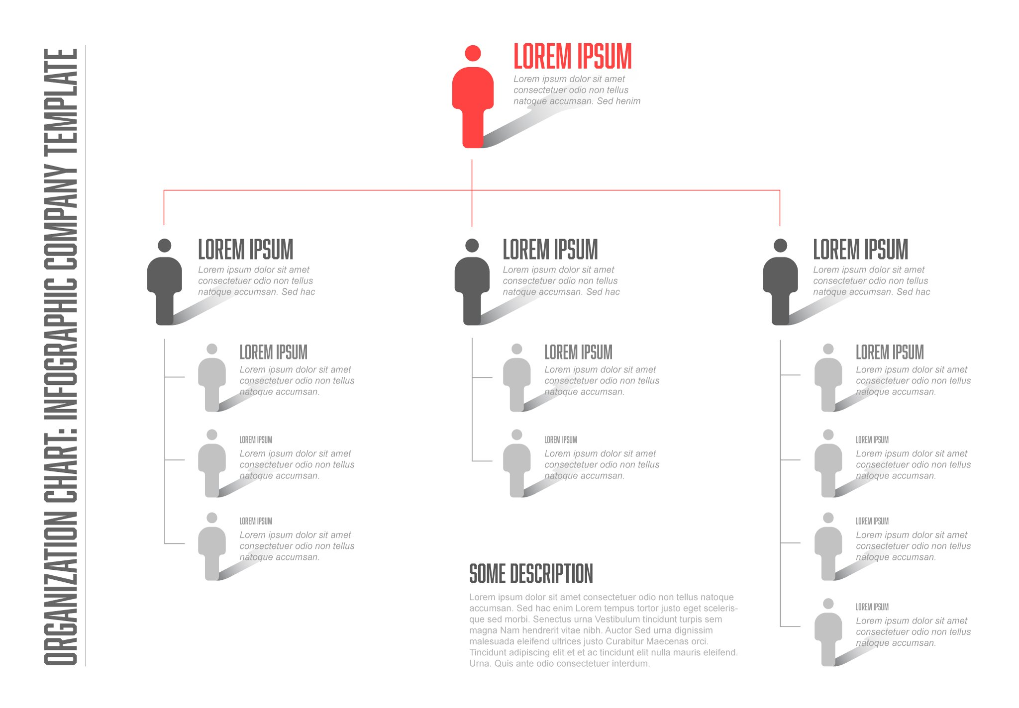 Company hierarchy template ~ Graphic Objects ~ Creative Market
