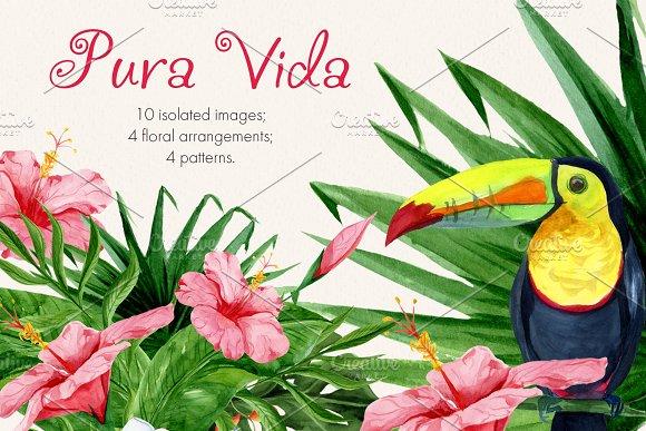 Pura Vida. Watercolor clipart