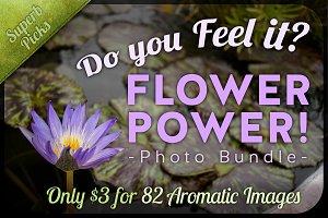 Flower Power Photo Bundle