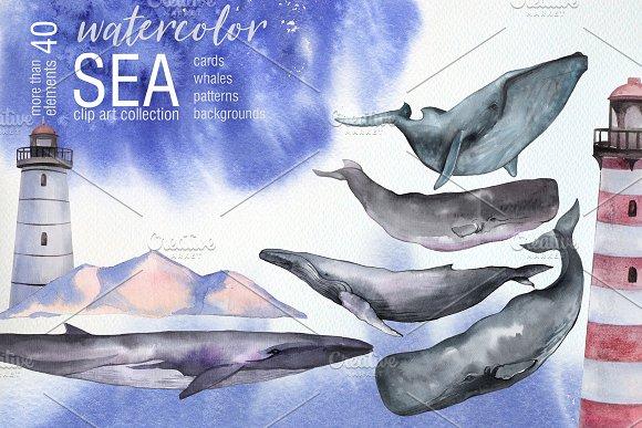 Watercolor Sea Whales Clip Art