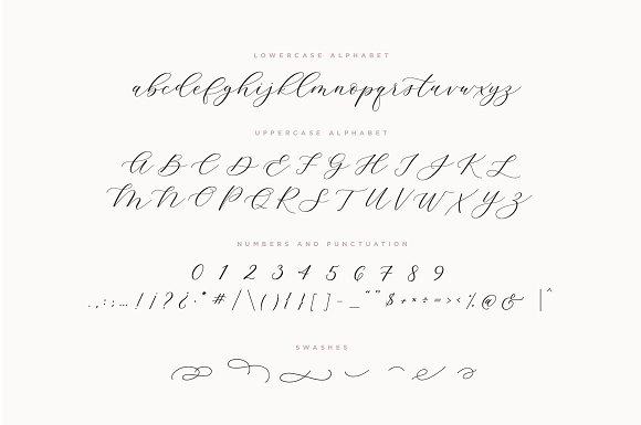 Adore Calligraphy Font Script Fonts Creative Market