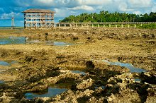 Low tide at Cloud 9, Philippines