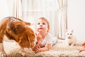 happy childhood with pets